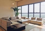 Cần bán căn hộ Penthouse của Dự án The Ascent, Thảo Điền, Q2, 206m2, sân vườn riêng