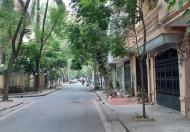 Bán Nhà Trần Nguyên Đán, KĐT Mới  Định Công DT 95*4 giá 10 tỷ.