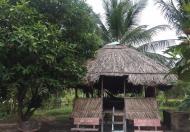 Cần Bán Khu Vườn nghĩ dưỡng Mặt Tiền Ngô Thì Sĩ gần trung tâm thành phố Rạch Giá. DT : 4959,14m²
