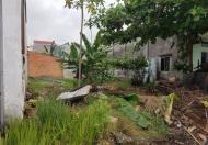 Chính Chủ Cần Cho Thuê Đất Đường Quốc Lộ 51, Thị trấn Phú Mỹ, Huyện Tân Thành, Bà Rịa - Vũng Tàu