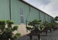 Bán hoặc cho thuê mặt bằng xưởng tại Ấp Vàm, Xã Thiện Tân, Huyện Vĩnh Cửu, Đồng Nai