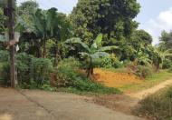 Cần bán gấp mảnh đất 1.159 m2, xã Hòa Sơn, Lương Sơn, Hòa Bình, cách thị trấn Xuân Mai 2km hướng đi Sơn Tây.