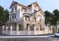 Gia đình bán Biệt Thự 250m2 Làng Việt Kiều Châu Âu, vị trí đẹp, đẳng cấp nhất khu đô thị.