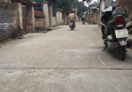 Bán mảnh đất Lương Quy,Xuân Nộn,Huyện Đông Anh Hà Nội(Lô góc 2 mặt đường kinh doanh được )