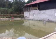 Chính Chủ Cần Bán Nhà Đất Thôn Tân Thành, Xã Phương Độ, TP Hà Giang.