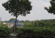 CHO THUÊ đất mặt tiền  80m  Đại lộ Mỹ Phước Tân Vạn Bình Dương.