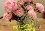 Bán nhà mặt tiền đường Nguyễn Đình Chiểu, Phương 6 , Quận 3,Hầm 7 Lầu, HĐT 10.000$$$