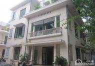 GẤP Bán nhà diện tích 300m2, mặt phố Nguyễn Bỉnh Khiêm, Hai Bà Trưng, KD siêu lợi nhuận