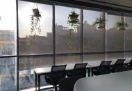 Văn phòng cao cấp trọn gói quận 1