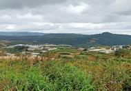 Cần bán lô đất nông nghiệp mặt tiền đường Kim Thạch, Phường 7, Đà Lạt