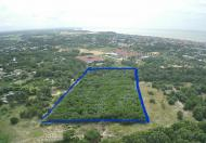 Bán 11,787m2 đất thuộc thị trấn Phước Hải, huyện Đất Đỏ, BRVT