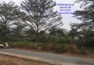 Bán nền E2 MT sông phường Phú Hữu Q9, 28tr/m2, 20x20, sổ đỏ cá nhân, d.án Thời Báo Kinh Tế Sài Gòn. LH: 0906997966