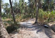 Chính Chủ gửi tin Bán đất Địa chỉ :Xã Tân Phú , Tiền Giang
