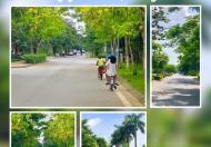 Biệt thự KĐT Đặng Xá, Gia Lâm, 8.2 tỷ. LH 0849501009