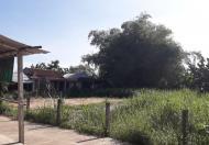 Cần tiền bán gấp lô đất xã Tịnh An, liên hệ 0372841998