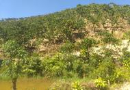 Bán đất nghỉ dưỡng diện tích 7000m2 view đồi tp bảo lộc