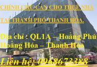 Cho thuê toà nhà đại việt - QL1A - Hoằng Phú - Hoằng Hóa - Thanh Hóa