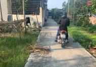 🎁🎁🎁   Bán Đất Ngõ Thành Tô Trang Cát Hải An Hải Phòng 75m2 Giá 7tr/m2