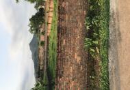 Bán 125m2 tại Minh Trí, Sóc Sơn, hai mặt thoáng, đường ô tô, giá 315tr
