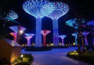 Chính chủ cần bán đất gấp ở Đường Nguyễn Xiển, Phường Long Thạnh Mỹ, Quận 9, Tp Hồ Chí Minh