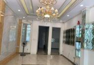 Cần bán gấp nhà 5T thang máy MP Tây Sơn.52m giá 20 tỷ