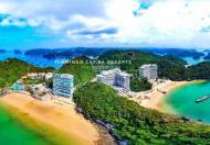 Bán căn view biển quỹ ngoại giao Flamingo Cát Bà, nhận ngay lợi nhuận 40% + CK 5%, LH 0982369316