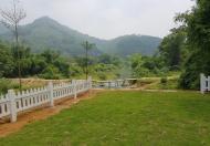 Chính chủ bán gấp lô đất siêu đẹp tại xã Tân Vinh-Huyện Lương Sơn-tỉnh Hòa Bình