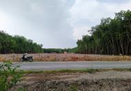 Bán đất xã Tân Long . Huyện Phú Giáo . tỉnh Bình Dương