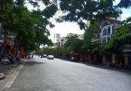 Bán nhà mặt đường Tôn Đức Thắng, Lê Chân, HP