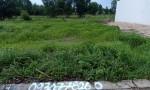 Chính chủ cần bán lô đất thổ cư mặt tiền tại xã Sông Trầu, huyện Trảng Bom, tỉnh Đồng Nai