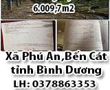 Bán Đất Trồng Cây Lâu Năm 6009,7m2  Phú An,Bến Cát,Bình Dương