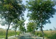 Bán lô đất dự án Đảo Thịnh Vượng, liền kề khu du lịch BCR, Dt: 58.4m2, SHR. Gía: 2.55 tỷ.