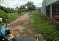 Sở hữu ngay đất Nông Nghiệp và thổ cư vị trí đắc địa tại huyện Đức Hòa, tỉnh Long An