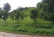 CHÍNH CHỦ CÂN BÁN ĐẤT TẠI Xã Tứ- Huyện Yên Sơn- Tỉnh Tuyên Quang