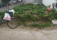 Bán gấp lô đất ở phường An Bình, đường xe hơi kia morning vô tới đất,