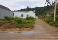 Cần tiền làm ăn bán nền đất Cây thông ngoài ,sổ hồng riêng LH:0363615816