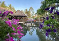 Cần bán nhà đang kinh doanh cạnh khu Casamia Hội An, Quảng Nam, giá đầu tư