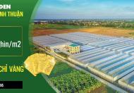 Chính chủ bán lô đất 40.000 m2 (4ha) đã có sổ tại Bình Thuận
