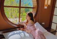 Những lý do nên đầu tư và Onsen Villas biệt thự nghỉ dưỡng ven đô Kỳ Sơn - Hòa Bình