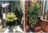 Cần bán nhà tại KDT cao cấp tổ 37 Trần Lãm, TP.Thái Bình, 0913291846
