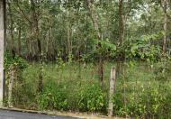 Chính chủ cần bán lô đất Khu phố 5 - Thị trấn Dầu Tiếng - Huyện Dầu Tiếng - Bình Dương