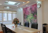 Bán gấp nhà phố Lê Trọng Tấn, phân lô, gara ô tô, kinh doanh văn phòng, tặng nội thất, 0396919255