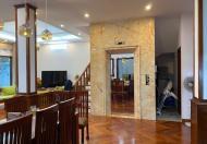 Bán biệt thự siêu đẹp khu phân lô Tam Trinh - Hoàng Mai, giá chỉ 23,5 tỷ
