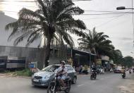 Bán đất ngay trường Hoa Lư, đường Quang Trung, ngay XLHN, Q9, DT 200m2 (10x20) giá 9,6 tỷ
