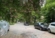 Bán Biệt thự Vườn Tùng Ecopark 423m2 MT 18m siêu VIP, siêu đẳng cấp 23 tỷ có TL