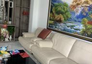 Biệt thự KDC An Phú HưngP.Tân Phong thiết kế hiện đại,giá :23 tỷ