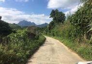 Bán gấp 9120m đất thổ cư view núi non làm nghỉ dưỡng tuyệt đẹp tại Cao Phong, Hòa Bình.