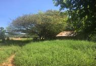 Đất đồi Bắc Bình Bình Thuận giá chỉ 50 ngàn 1 mét vuông, đẹp, công chứng sang tên ngay
