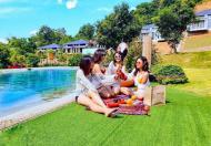 Quà tặng lên tới 450 triệu, giá chỉ 2ty1, sở hữu ngay căn Biệt thự Onsen Villas phong cách Nhật Bản