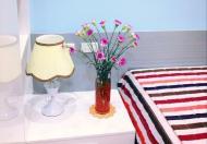 Cho thuê 1 ngủ full nội thất xịn đẹp giá 9 tr/tháng Ecolife Tố Hữu LH 0985409147